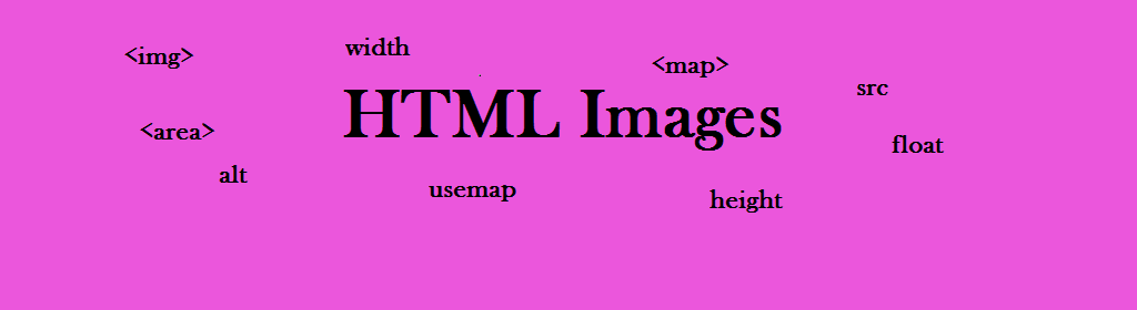 A online HTML Images tutorial for beginners