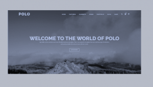 Top 10 Multi-purpose and Responsive HTML Templates_Free Download_Polo